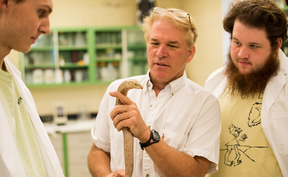 a faculty member holding a snake talks to two students