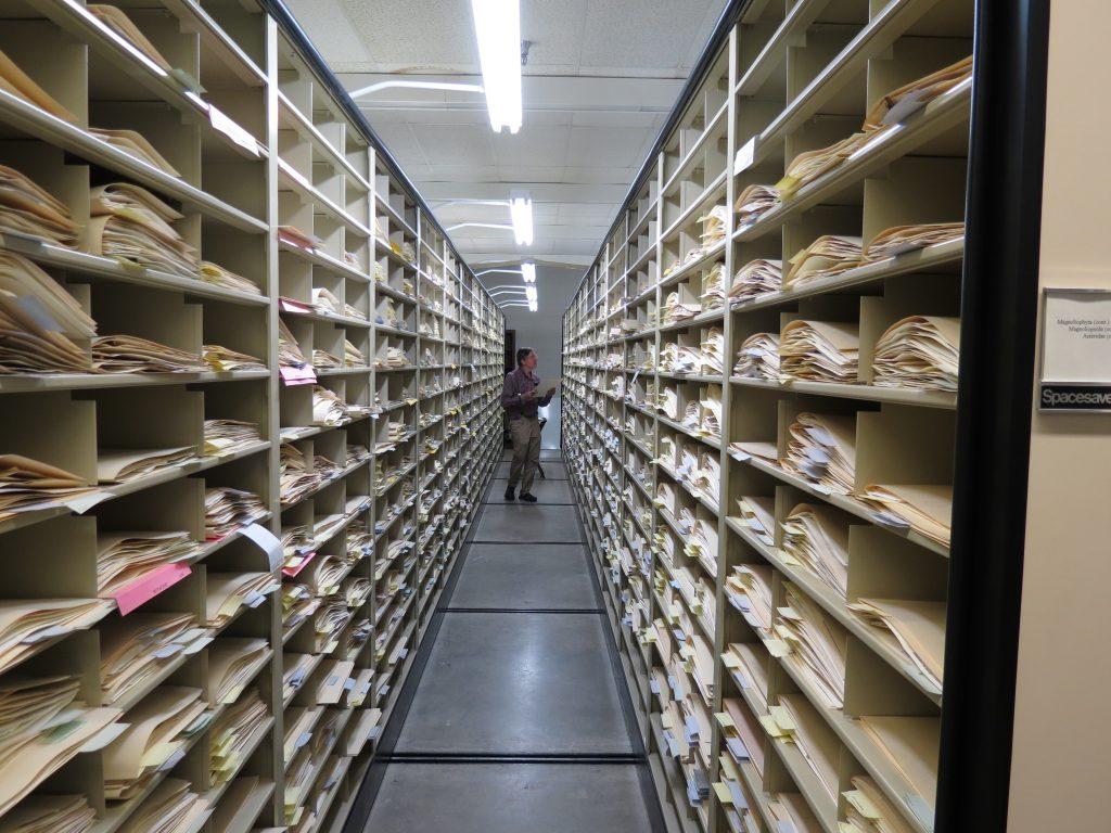 Herbarium space